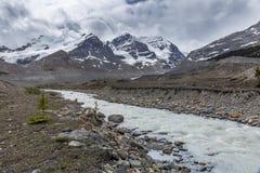 Athabasca River - Jasper National Park Royalty Free Stock Photo