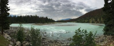 Athabasca River, Jasper National Park royalty free stock image