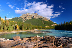 Athabasca River and Mount Kerkeslin. Athabasca River flows through the valley below Mount Kerkeslin of Jasper National Park in Canada Royalty Free Stock Photo