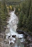 Athabasca River Rocky Mountains Royalty Free Stock Photography