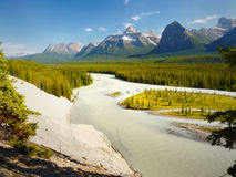 Athabasca River Rocky Mountains Jasper Stock Image