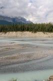 Athabasca River Royalty Free Stock Image