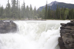 Athabasca river spilling over athabasca falls Stock Image