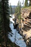 Athabasca siklawa fotografia royalty free