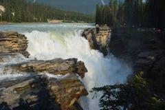 Athabasca Spada Kanada Obrazy Stock
