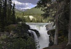 Athabasca Spadać w Jaspisie Fotografia Stock