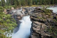 Athabasca Spada w Jaspisowym parku narodowym - Alberta, Kanada Obraz Royalty Free
