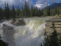 Athabasca spadki 3533 Zdjęcia Stock