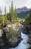 Athabasca tombe près du jaspe dans le Canada Alberta Photo stock