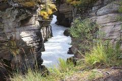 Athabasca vattenfall Arkivfoton