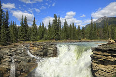 Athabasca waterfall. Rocky mountains. Jasper National Park. Alberta. Canada stock image