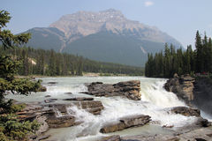Athabasca Waterfall Stock Photo