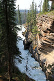 Athabasca Waterfall Royalty Free Stock Photography