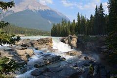 Athabascadalingen Canada stock fotografie