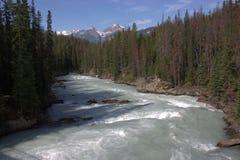 athabascaflod Fotografering för Bildbyråer