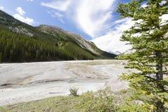 athabascaflodsikt västra Kanada Arkivbild