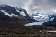 Athabascagletsjer in Colombia Icefield Stock Afbeeldingen