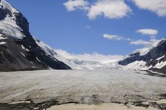 Athabascagletsjer Colombia Icefields Royalty-vrije Stock Afbeelding
