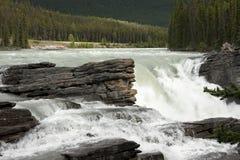 Athabaska baja en los Rockies - la Alberta canadienses. imagen de archivo