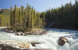 Athabaska falls Jasper Alberta Royalty Free Stock Photos