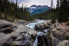 Athabaska falls Rockies, Alberta, Canada Stock Image
