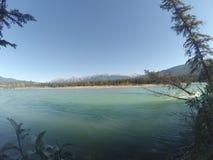 Athabaska flod Royaltyfria Foton
