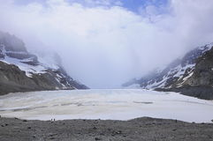 Athabaska Gletscher. lizenzfreie stockfotografie