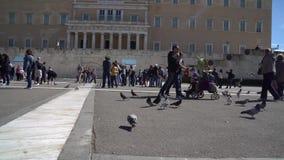 Athen, Griechenland - 11 04 2018: Leute und Tauben nähern sich Parlaments-und Syntagma-Quadrat in Athen, Griechenland stock video