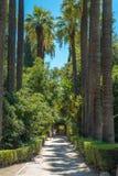 Athen-Staatsangehöriggarten Lizenzfreie Stockbilder