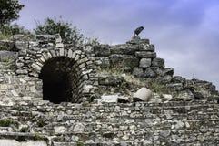 Athena temple of Ephesus Stock Images
