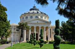 Athenaeum Boekarest, Roemenië Stock Foto's