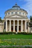 Athenaeum Bucharest, Rumunia Zdjęcie Stock