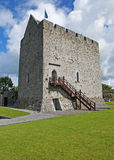 athenry城堡爱尔兰 库存图片