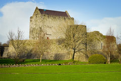 Athenry Castle at Autumn Royalty Free Stock Photo