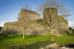 Athenry Castle in Autumn Stock Photos