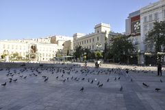Athens, august 27th: Water Fountain and a lot of Pigeons of Kotzia Square from Athens in Greece. Water Fountain and a lot of Pigeons in Kotzia Square from Athens stock photo