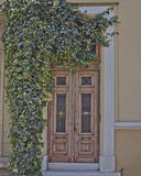 Athens Greece, house entrance and ivy plant Stock Photos