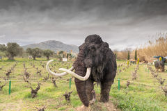 Athens, Greece 17 January 2016. Mammoth portrait at the dinosaur park in Greece. Royalty Free Stock Photo