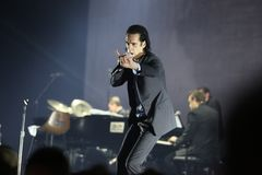 Nick Cave Royalty Free Stock Image