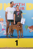 Athens, Greece 4 October 2015. Family gets the first prize in competition run with your dog in Greece. Royalty Free Stock Images