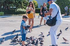 ATHENS, GREECE - SEPTEMBER 16, 2018: Young kid poses with pigeons and beautiful women smiling to him at the Greek Parliament. Building near Syntagma Square stock images