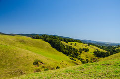 Atherton Tableland. Meadowland in the Atherton Tableland on a beautiful day Royalty Free Stock Photos