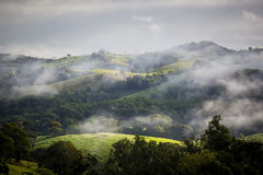 Atherton Tablelands on a Misty Morning Royalty Free Stock Image