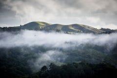 Atherton Tablelands on a Misty Morning Royalty Free Stock Photos