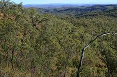 Atherton Tablelands Stock Image