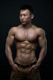 Athlète coréen images libres de droits