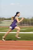 Athlète féminin Running On Track Photos libres de droits