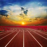 Athlète Track Running Track avec le lotus rouge gentil scénique images stock