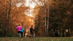Athlètes courants en parc sur une course pendant le début de la matinée Plusieurs enfants courent dans les bois faisant des sport Photos libres de droits