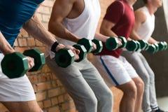 Athlètes masculins gais soulevant des haltères Photo stock